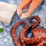Beneficios pescado congelado Salgado Congelados