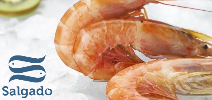 Beneficios nutricionales del marisco en una dieta equilibrada